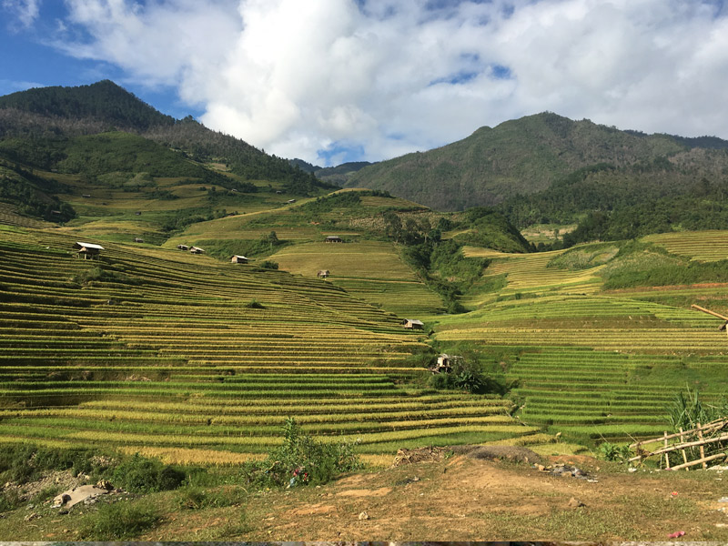 Rice terraces Mu Cang Chai